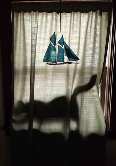 Sitka Curtain.jpg